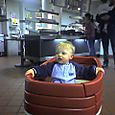 Hunter gets a wagon ride to dinner at Yale Caf
